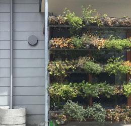 都市部でも気軽に緑を取り入れられる緑化システム【エクセルソイル固化培土】