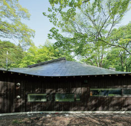 """デザイン性・強度・防水性能の高さを実現した""""パーフェクト"""" な屋根【パーフェクトルーフ】"""